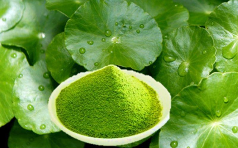 mat na tra xanh và rau ma