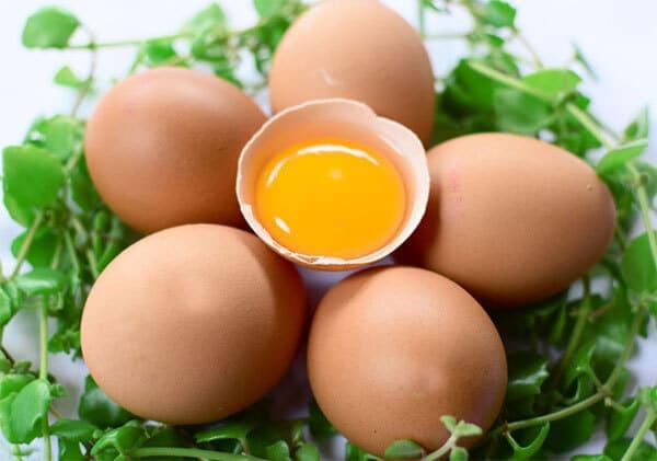 Trẻ bị thiếu máu nên ăn trứng