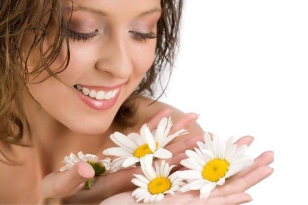 Hoa cúc cách phục hồi da mặt an toàn